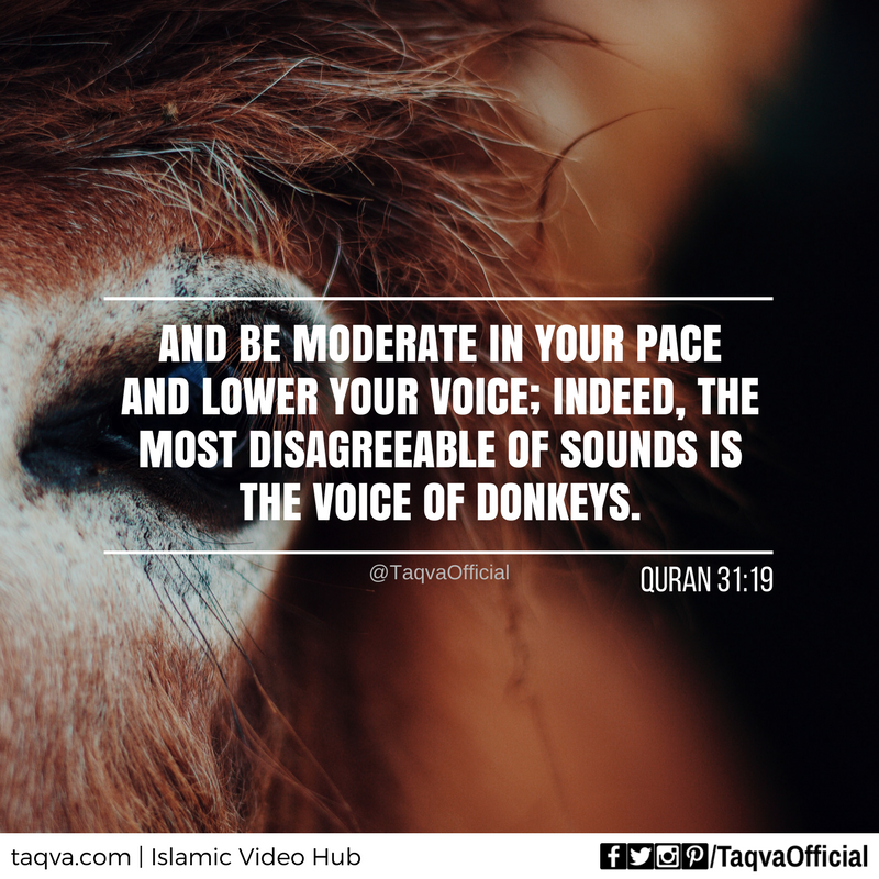 And be moderate in your pace and lower your #voice