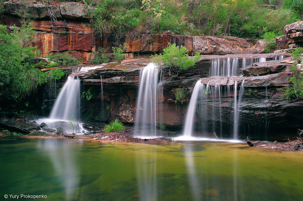 Waterfall Winifred Falls Waterfall Royal National National Parks