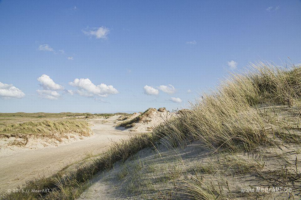 Die Faszination von De Slufter // #Nordsee #Texel #Holland #Niederlande #DeSlufter #MeerART / gepinnt von www.MeerART.de