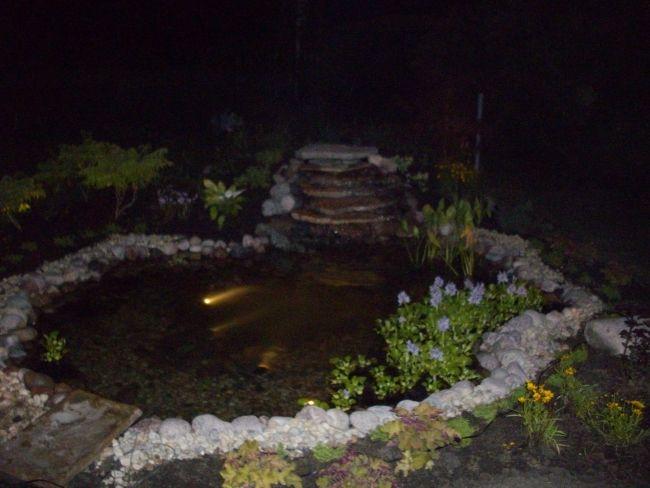 Rebuilding A Backyard Pond | Ponds backyard, Pond ...