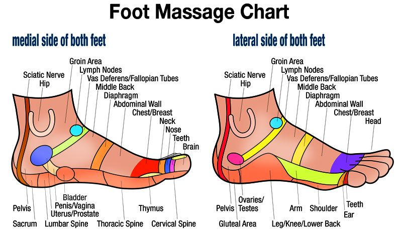 High resolution free downloadable foot massage side chart for