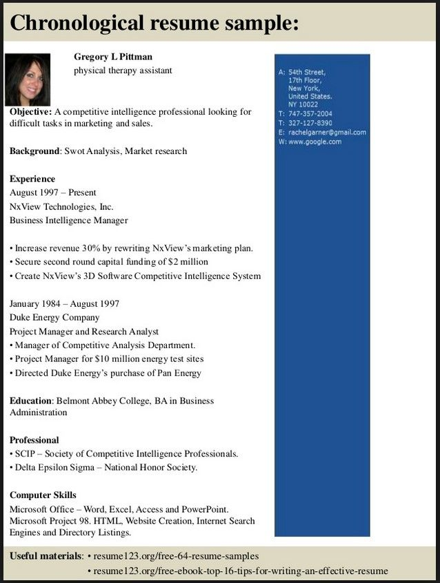 physical therapy resume objective - Business Object Resume