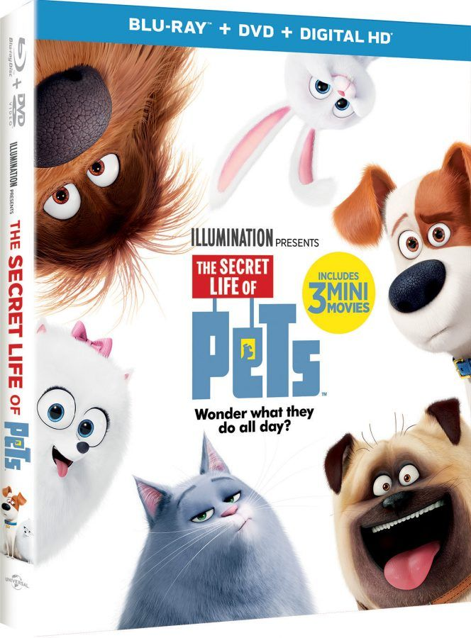 The Secret Life of Pets available for home viewing 11/22- so many fun extras available to enjoy! TheSecretLifeofPets PetsPack AD