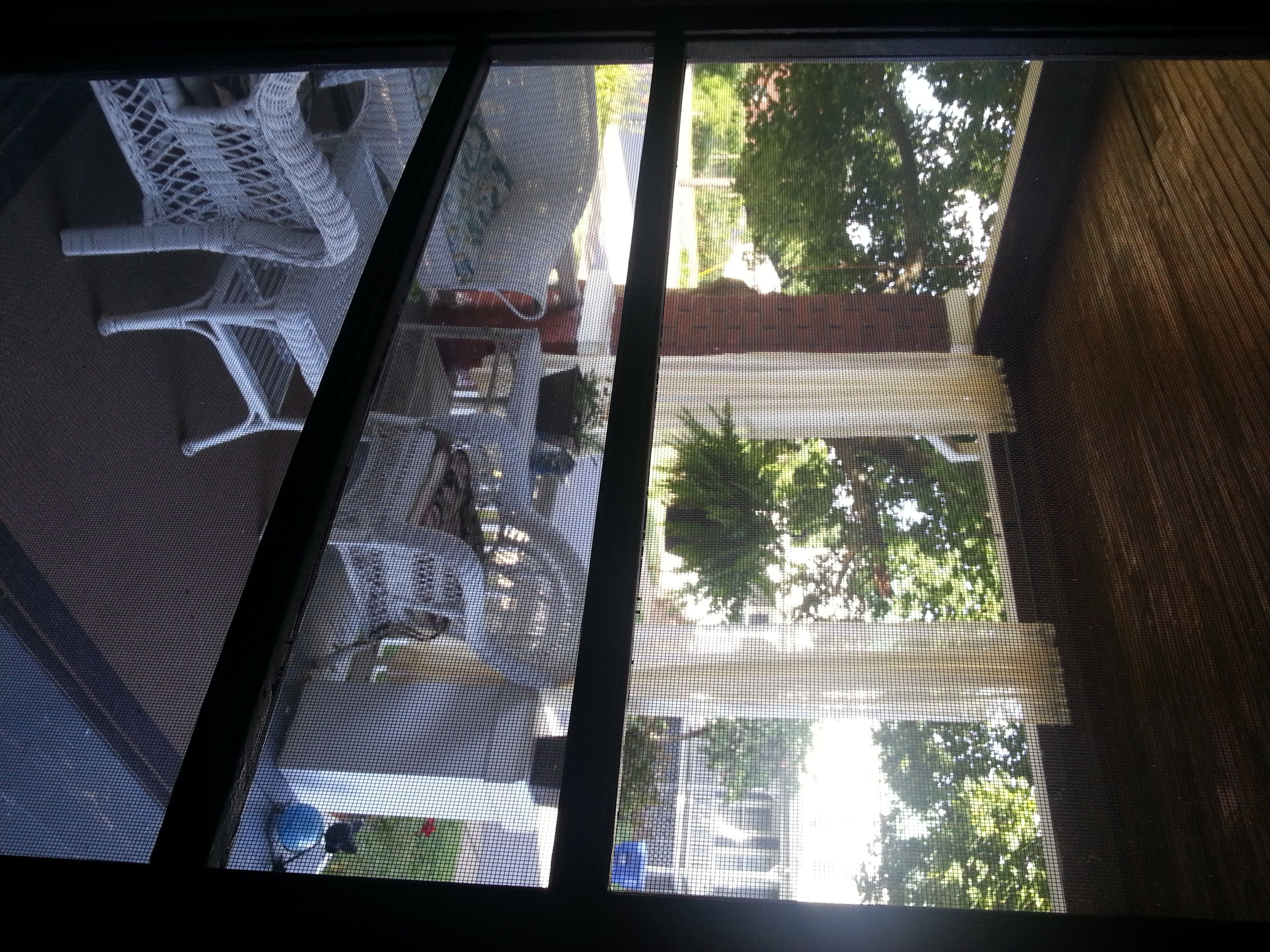 View Through The Screen Door From The Inside My Brick Bungalow