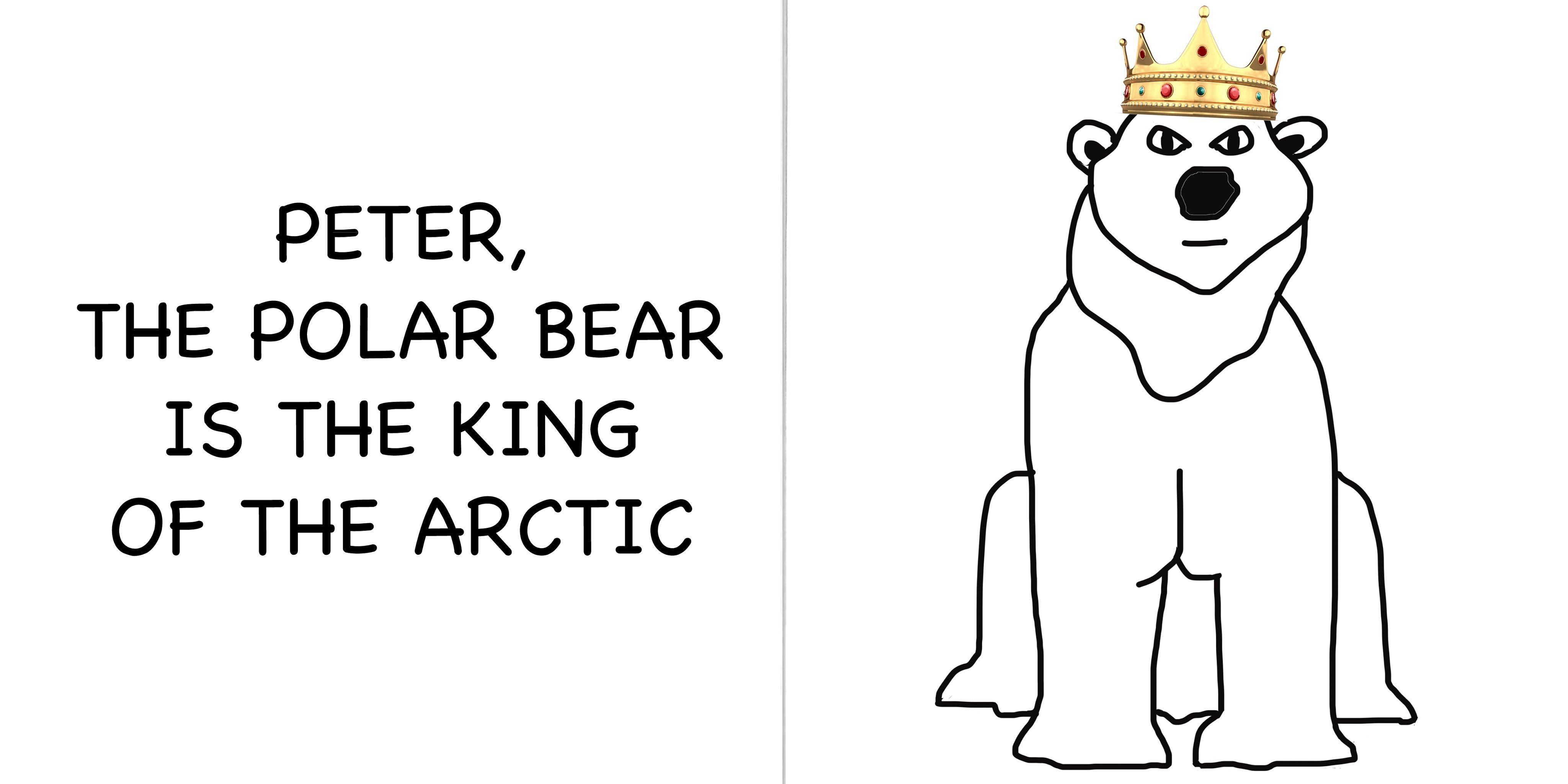Snow Animals Amp Polar Animals