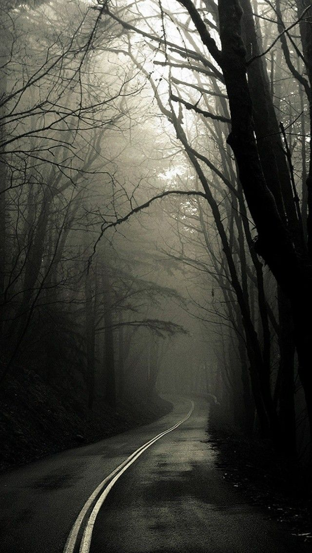 Creepy Road Forest Trees Fog Android iPhone Wallpaper