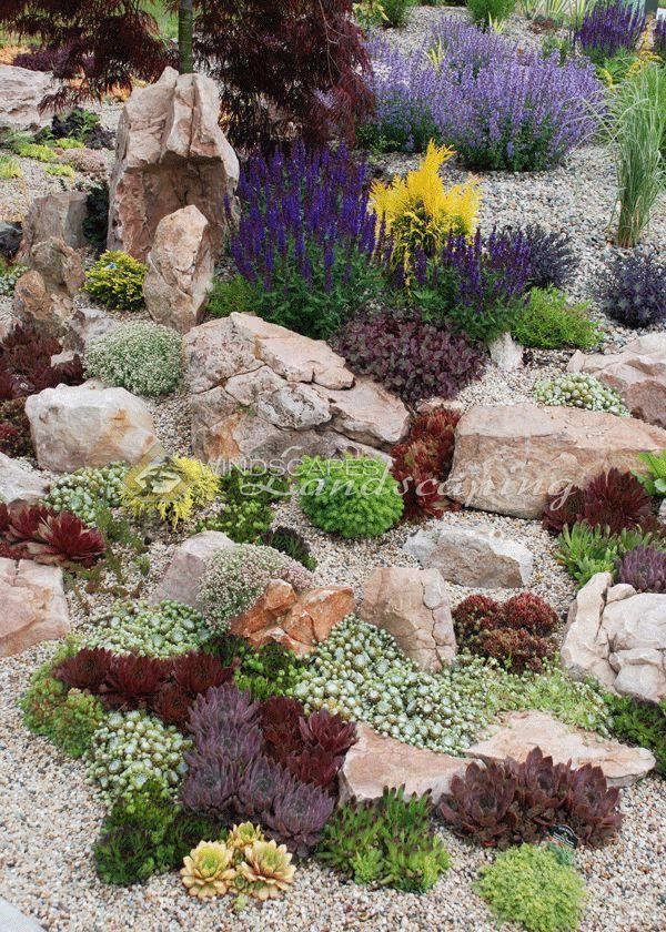 Succulent rock garden with Chick Charms & Sunsparkler Sedums  www.chickcharms.net www.sunsparklerse #steingartenideen