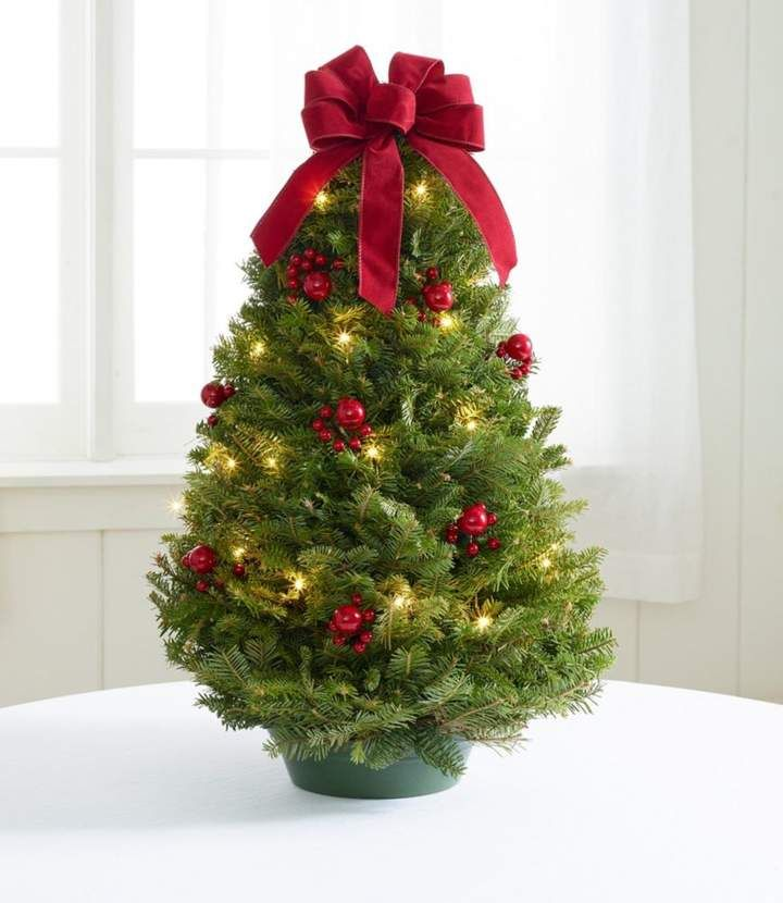 Traditional Tabletop Tree, Prelit Christmas Pinterest