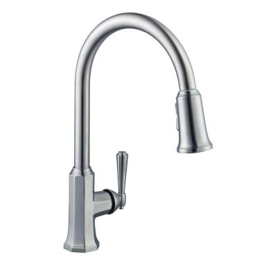 Pegasus Sentio Single Handle Pull Down Sprayer Kitchen Faucet In