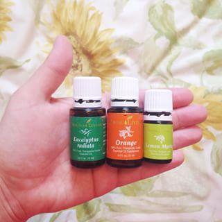 {Morning diffuser blend}: 4 drops Orange, 1 drop Lemon Myrtle, 2 drops Eucalyptus - bright & invigorating!