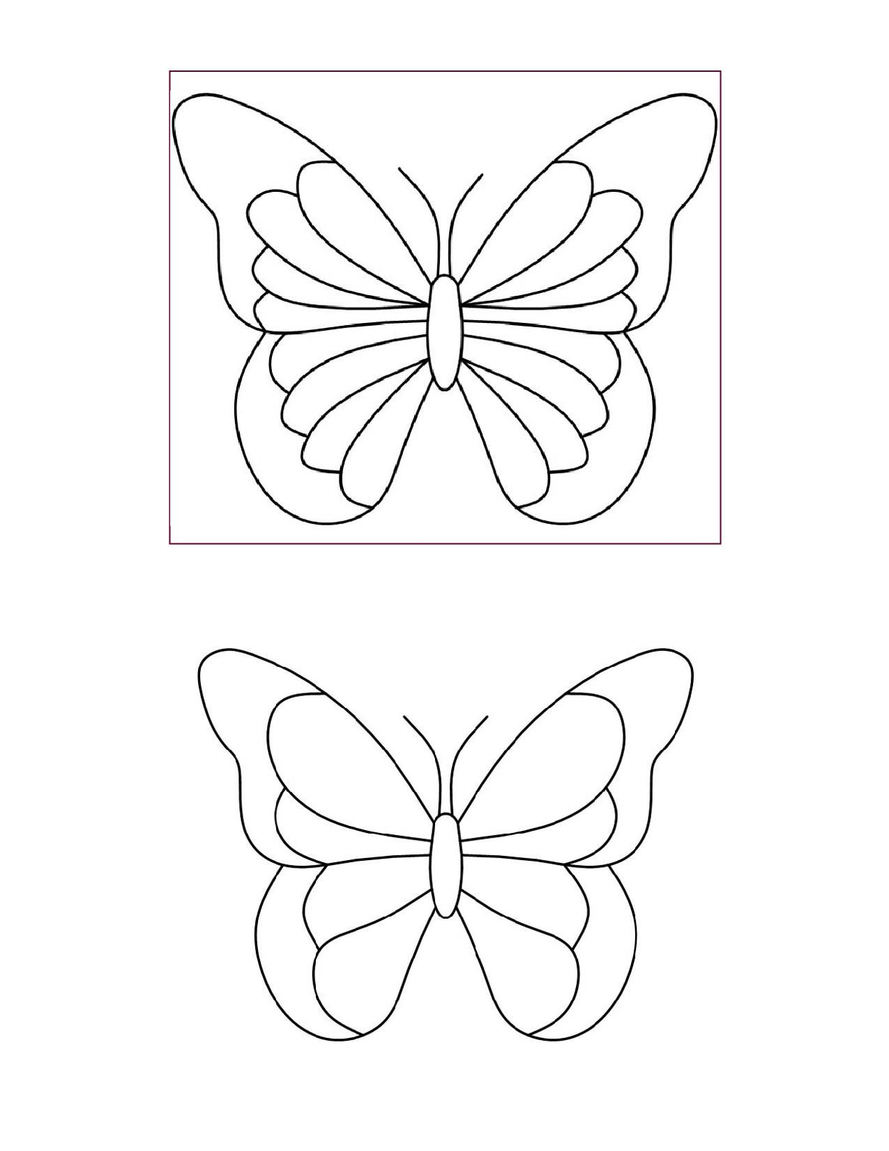 Butterfly Template   Art Class    Butterfly Template