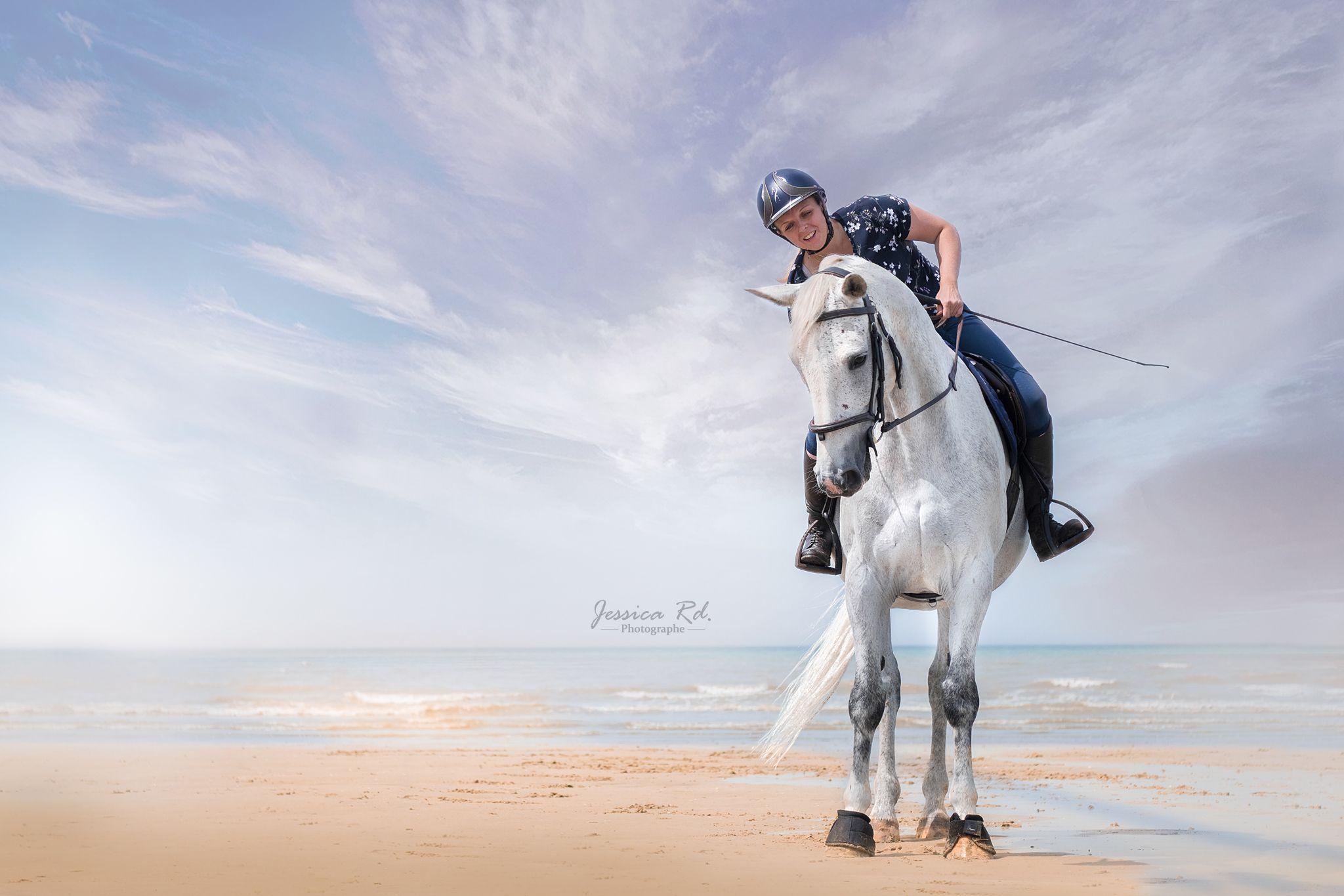 Photographie Artistique De Chevaux Sur La Plage Dunkerque Nord Par Jessica Rd Photographe D Animaux En 2020 Photographie Artistique Animaux Photographie
