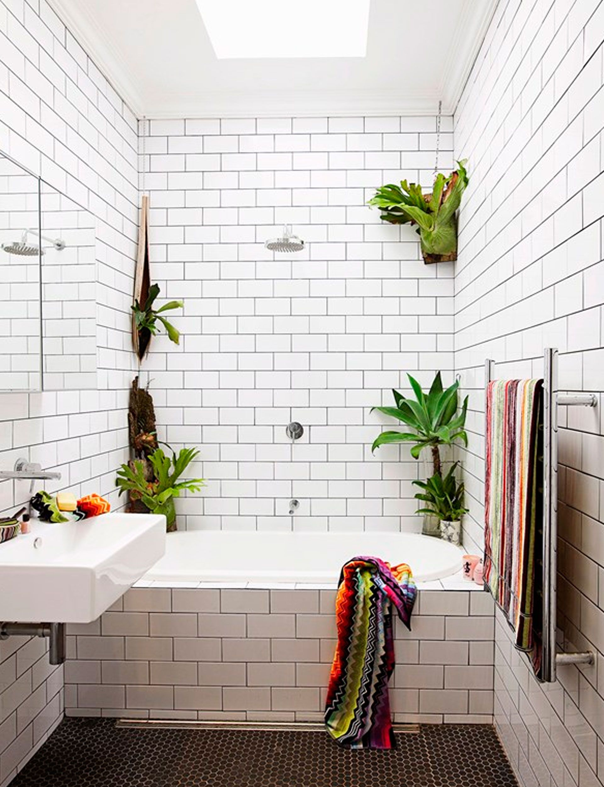 Our Top 10 Indoor Hanging Plants That Are Hard To Kill Windowless Bathroom Best Bathroom Plants Bathroom Plants