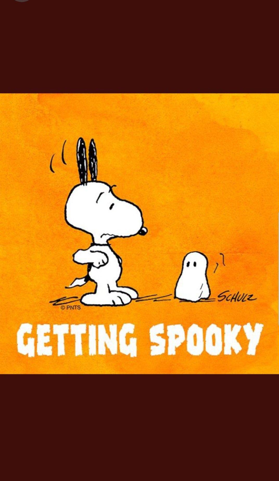 peanut halloween | comics | snoopy, peanuts snoopy, snoopy halloween
