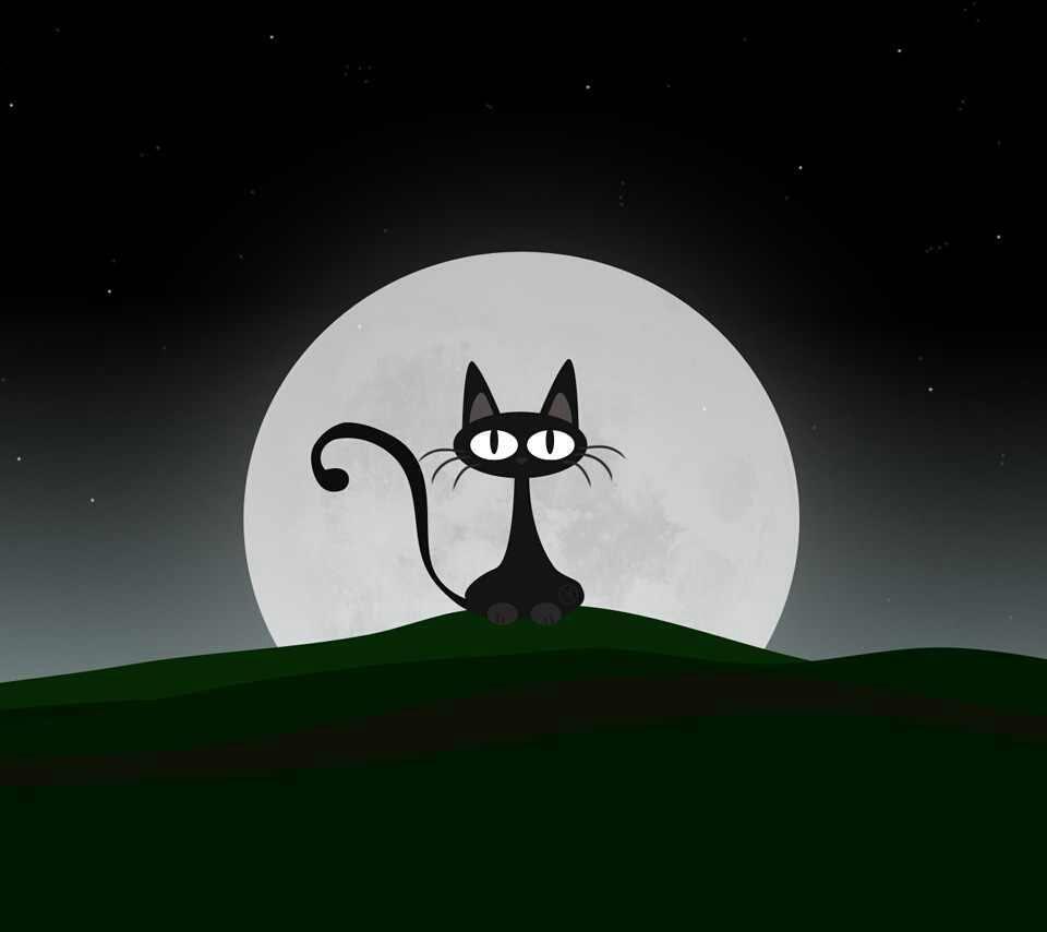 black cat and full moon.