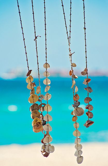 Shells swinging in the breeze - another thing to try with those holed shells I just can't leave on the beach!