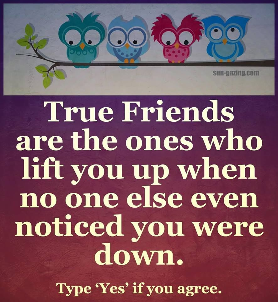 True Friends Are The Ones Who Will Lift You Life Quotes Quotes Quote Friends Best Friends Bff Friendship Quo True Friends Quotes Friendship Quotes True Friends