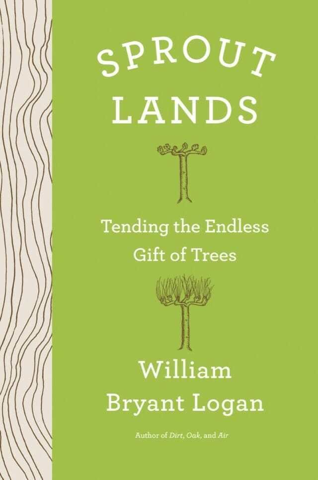 how we and the trees grew together: 'sprout lands,