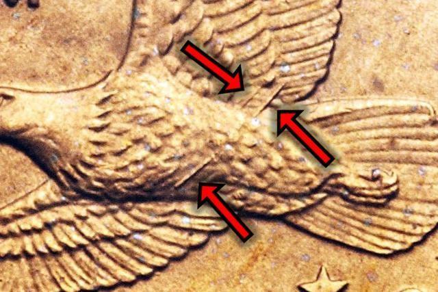 3 Sacagawea Dollars That Can Make You Rich Sacagawea Dollar Sacagawea Rare Coins Worth Money