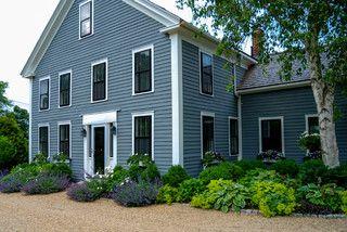 Boston farm.. nepeta, lady's mantle, hosta