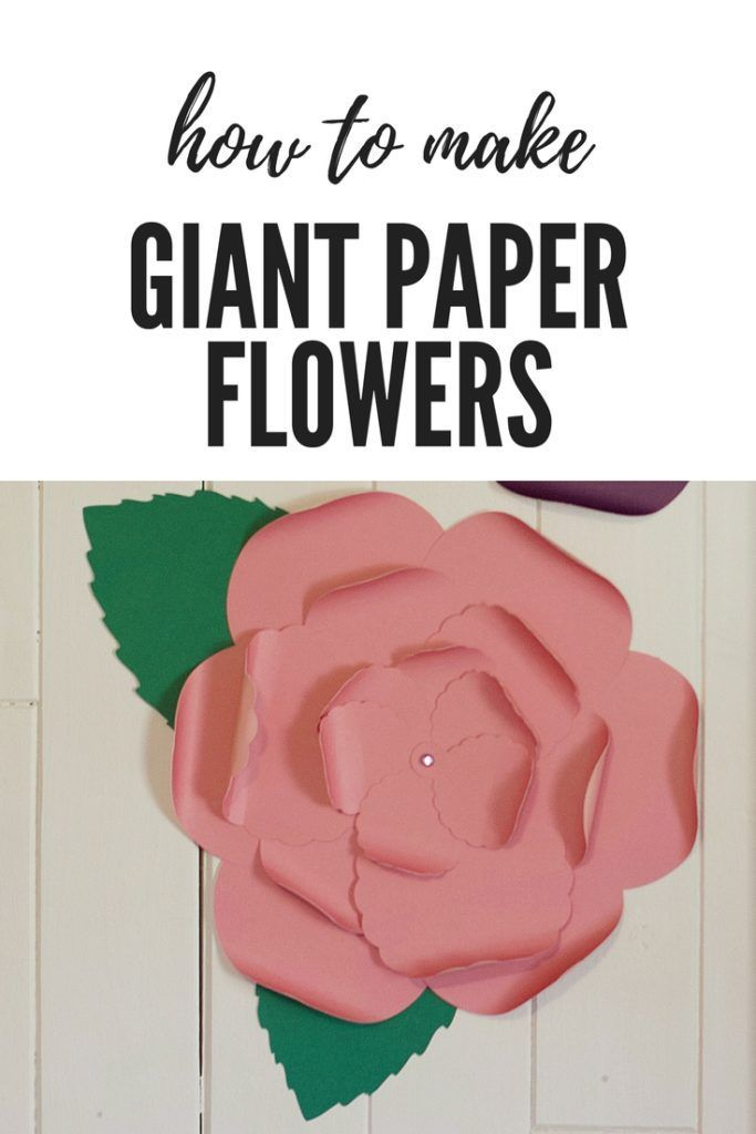 how to make giant paper flowers giant paper flowers paper flowers