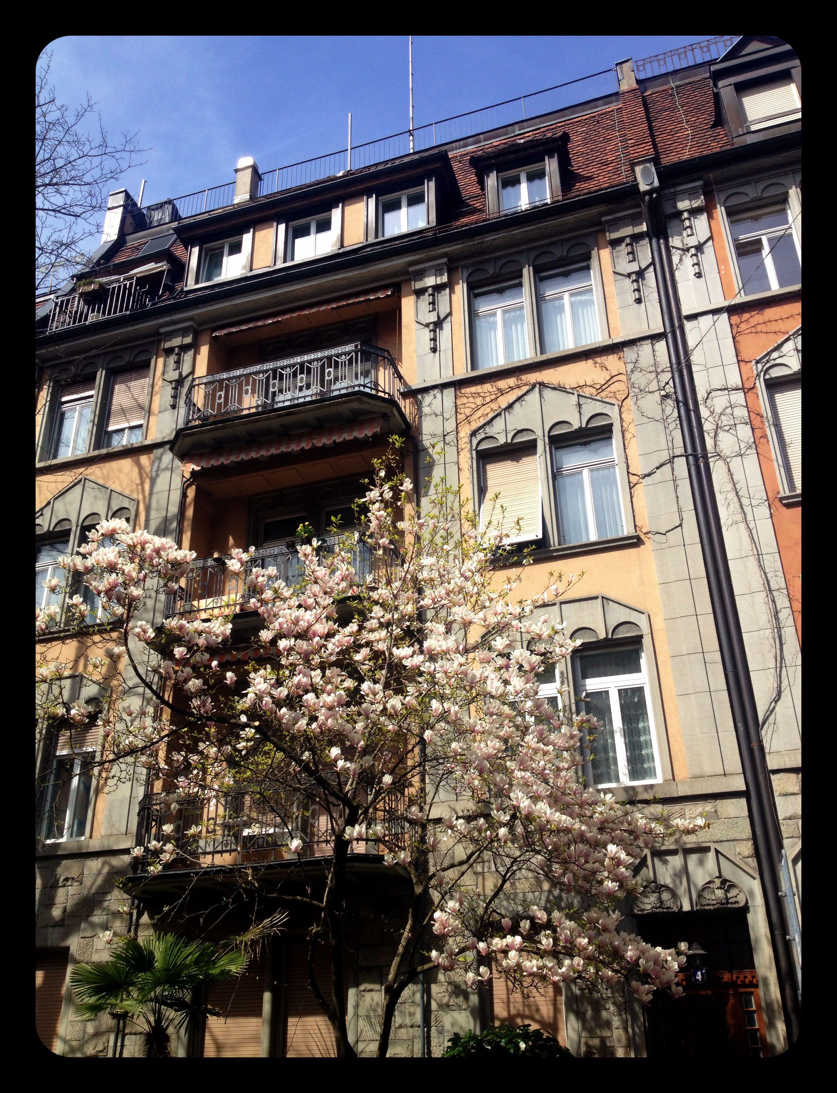 Spring in Zürich