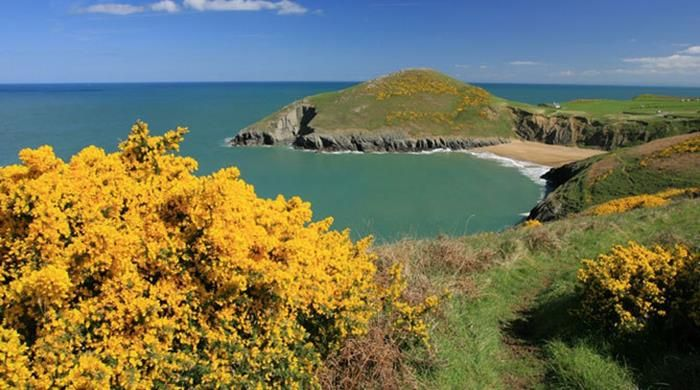 Things To Do In Mid Wales Near Me   Day Out With The Kids   Cardigan bay, Beach cardigan, Wales ...