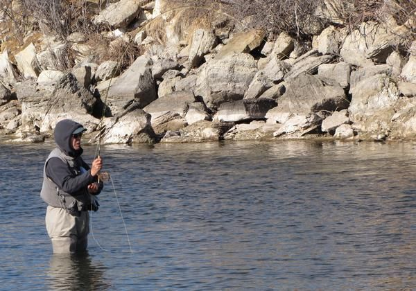 Search Results For Ci 14320662 The Denver Post Fly Fishing Best Fishing Aquatic Insects