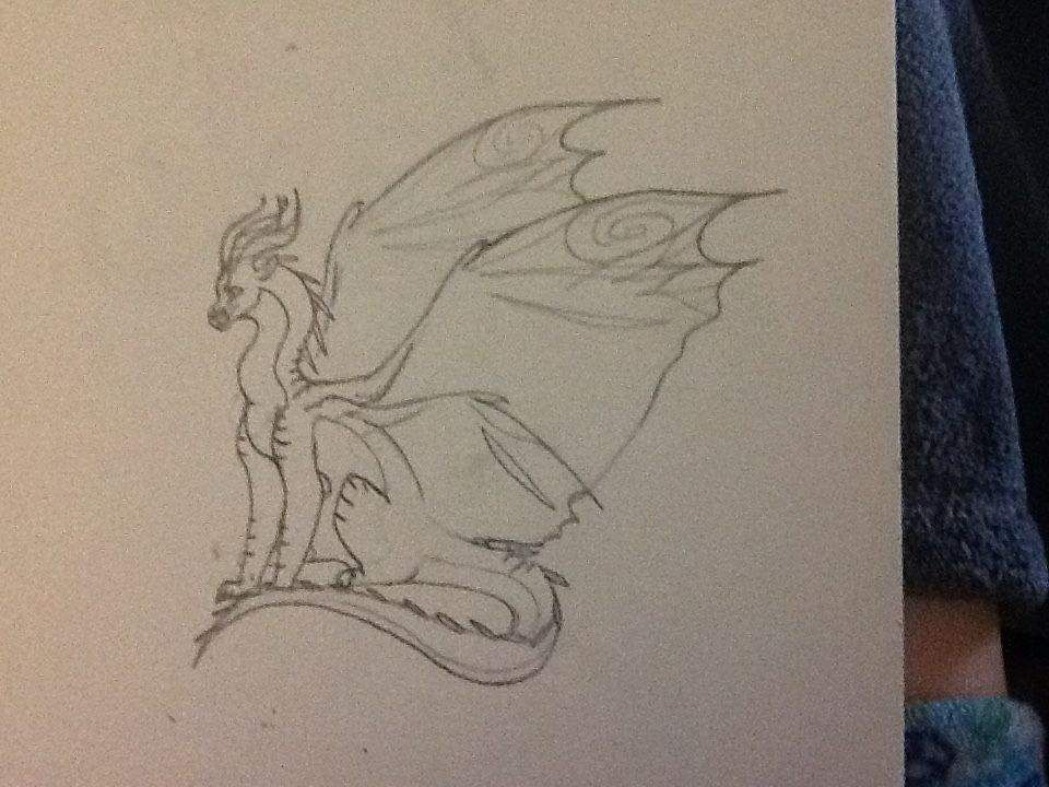 Image result for silkwing | Wings of fire