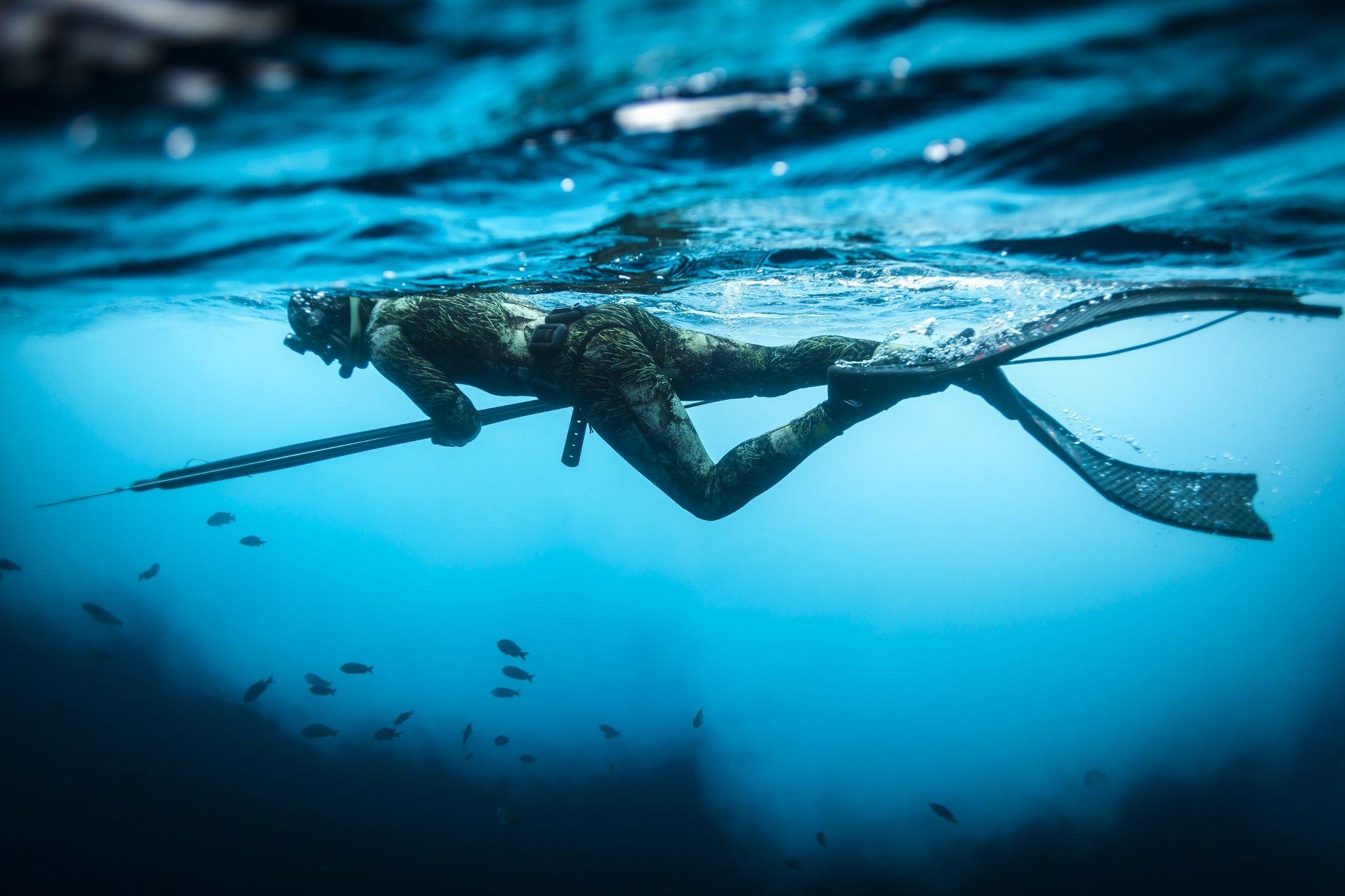 Spearfishing spearfishing offshore fishing underwater
