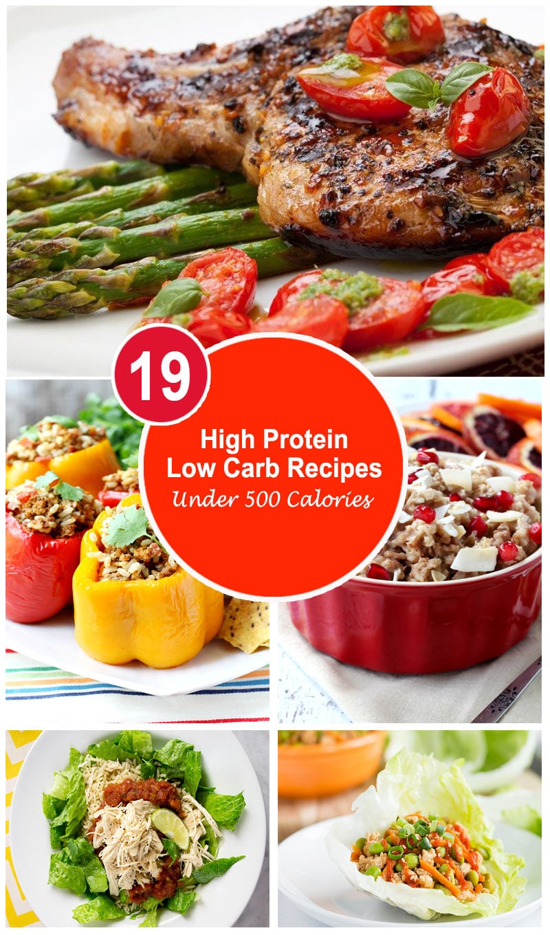 19 High Protein Low Carb Recipes Under 500 Calories No