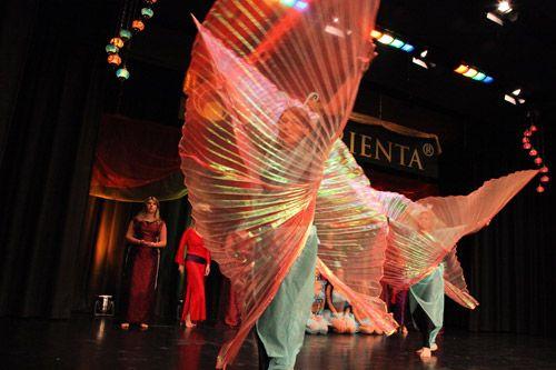 Medley Drei Rosen Wahrend Der Orienta Schmetterlinge Foto R Rossbacher Http Ot Pur De Veranstaltungen Tanzshow Fun Fun Slide Fair Grounds