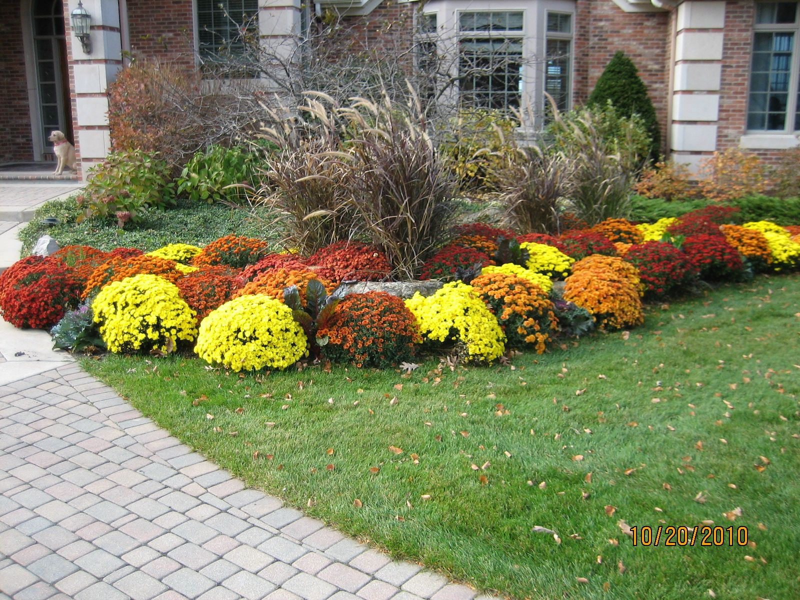 A Variety Of Colors Works Well In Every Flower Bed Fall Landscaping Landscaping With Rocks Porch Flowers