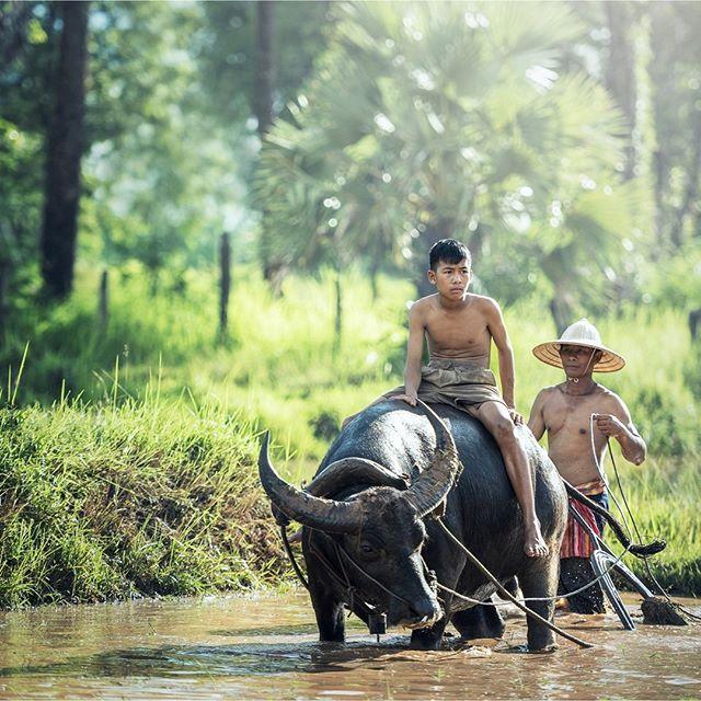 Laos, Budget Friendly Honeymoons, South East
