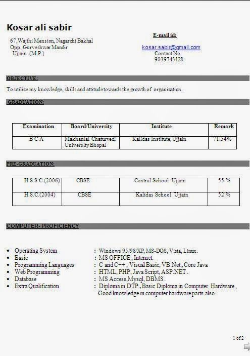 copy of resume Sample Template Example of Excellent Curriculum Vitae