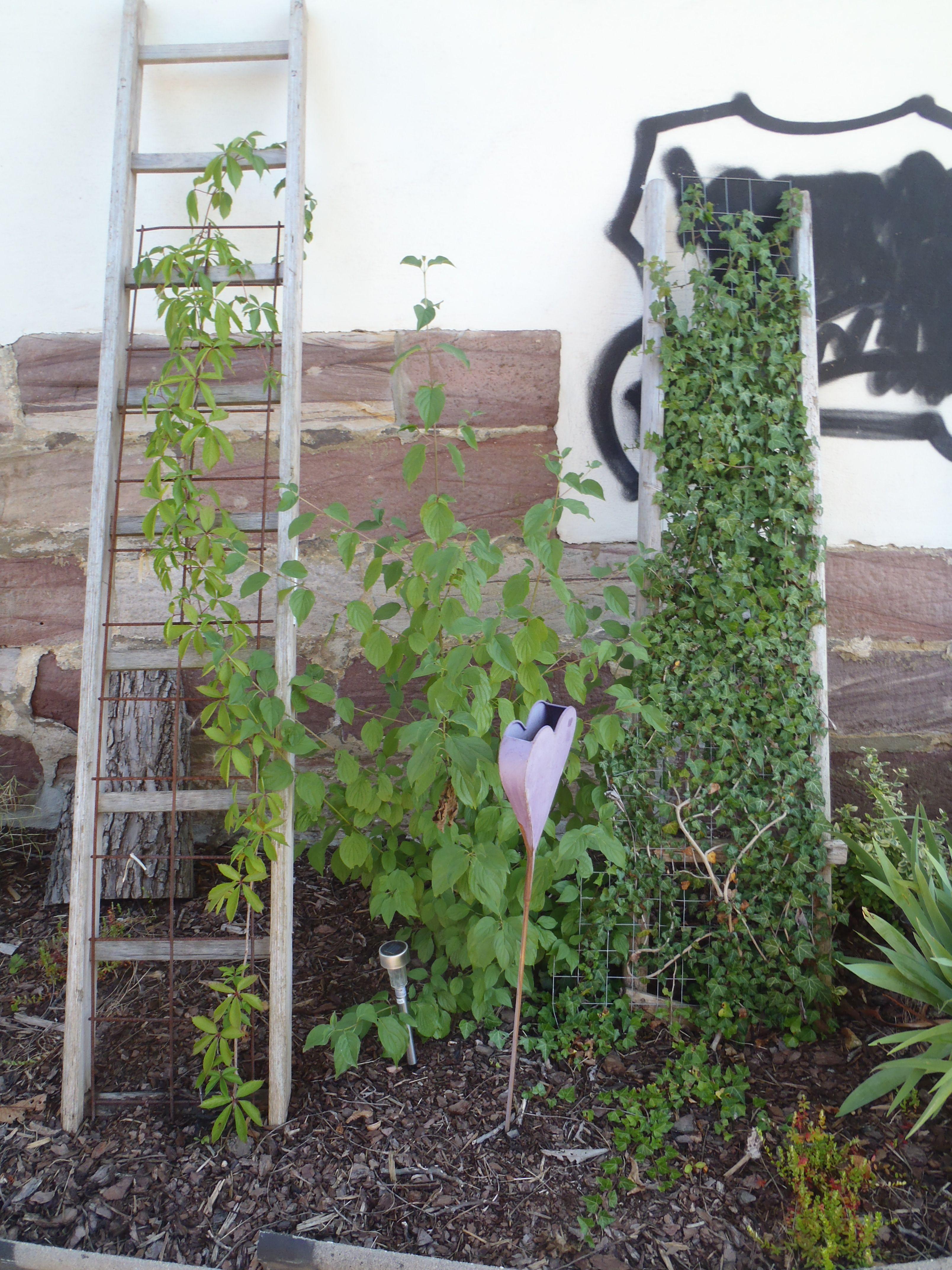 Einzigartig Garten Bepflanzen Ideen Ideen