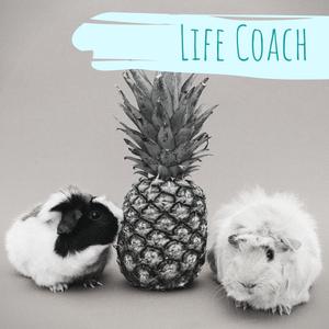 So hat ein Life Coach mein Leben verändert | Into Sense