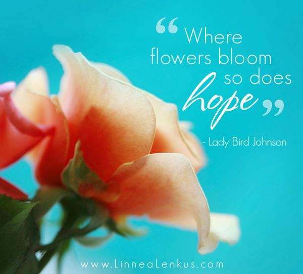 Flowers And Hope Pavelife Quotes Inspirational Flower Quotes Hope Quotes Inspirational Nature Quotes Inspirational