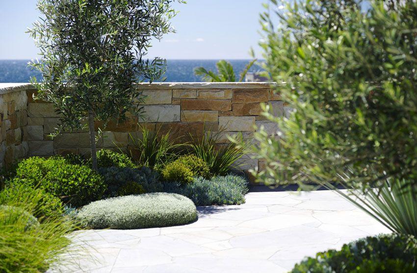 Landscape Design Coogee Secret Gardens Of Sydney Modern Landscaping Modern Landscape Design Landscape Design