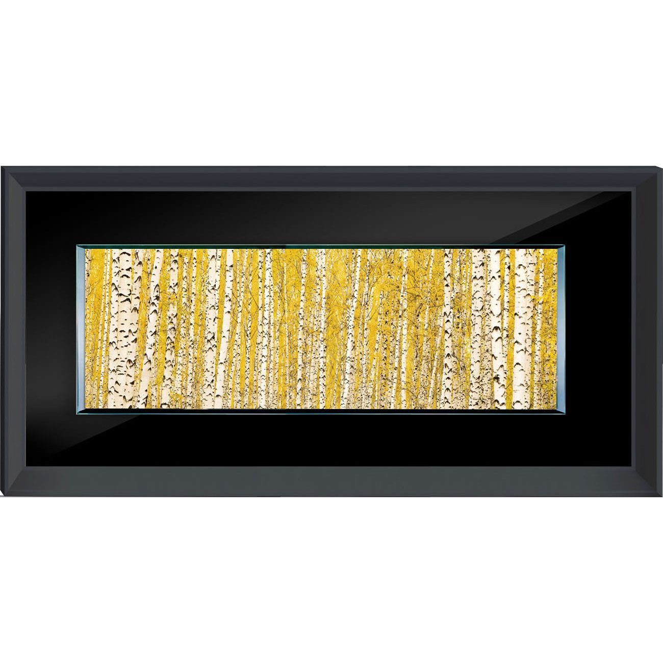 Benjamin Parker \'Birch in Yellow\' 24-inch x 48-inch -on- Tempered ...