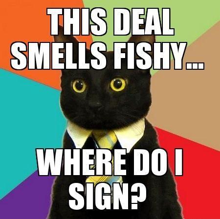 75315371dfb8ebe2596edfa9dfbe648e meme business cat google zoeken funny pics & memes pinterest
