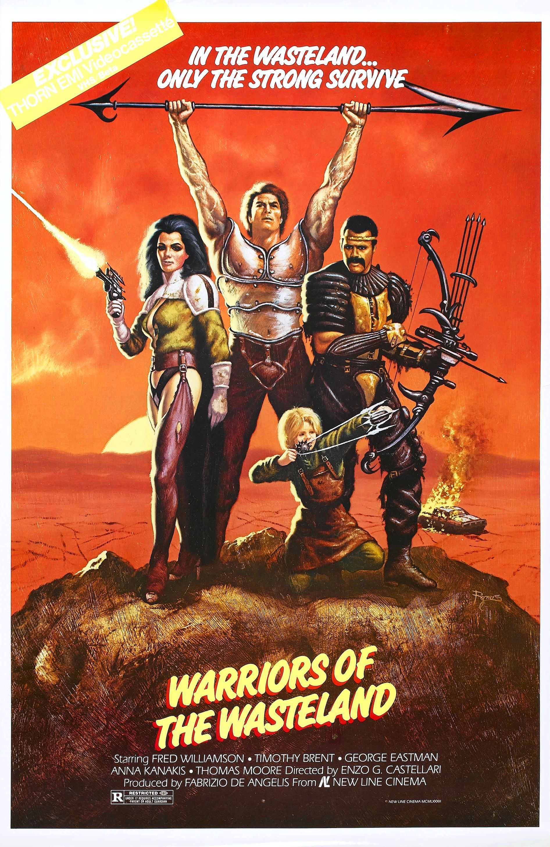 FILM CLASSIC Mal And Fight Warriors MOVIE POSTER
