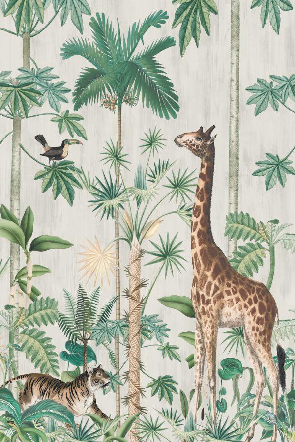 Jungle behang  Giraffes Stroll van Rebel walls Het perspectief en het gezichtspunt van één van s werelds meest vreemde en fascinerende dieren  de giraf zie...