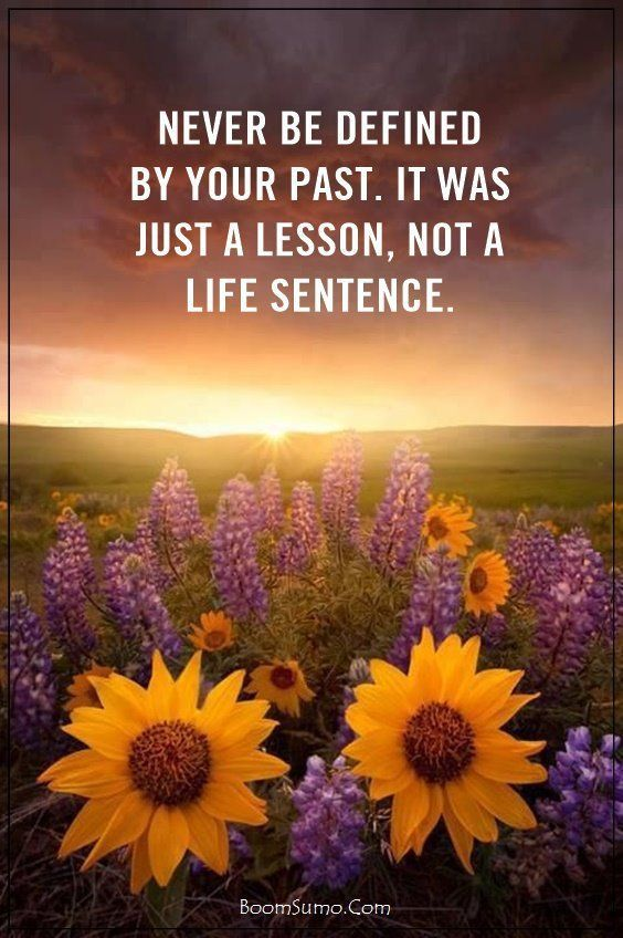 Wisdom Quotes 60 Best Life Quotes About Life And Love Beauty Quote 10 With Images Good Life Quotes Life Is Beautiful Quotes Beauty Quotes