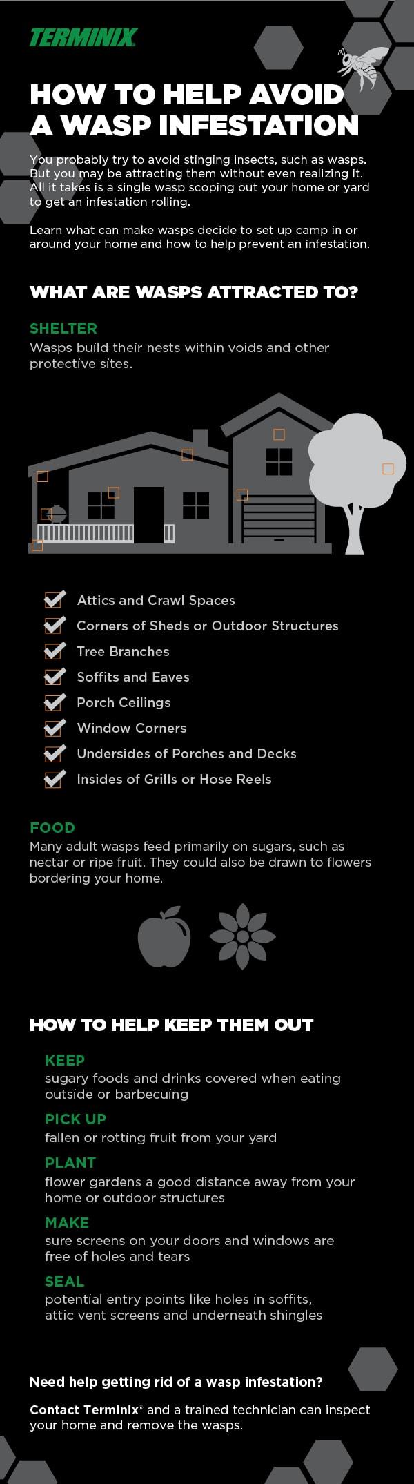 753294b07ee58cd936aeed3a7907a475 - How To Get Rid Of Wasp Nest In Roof Tiles