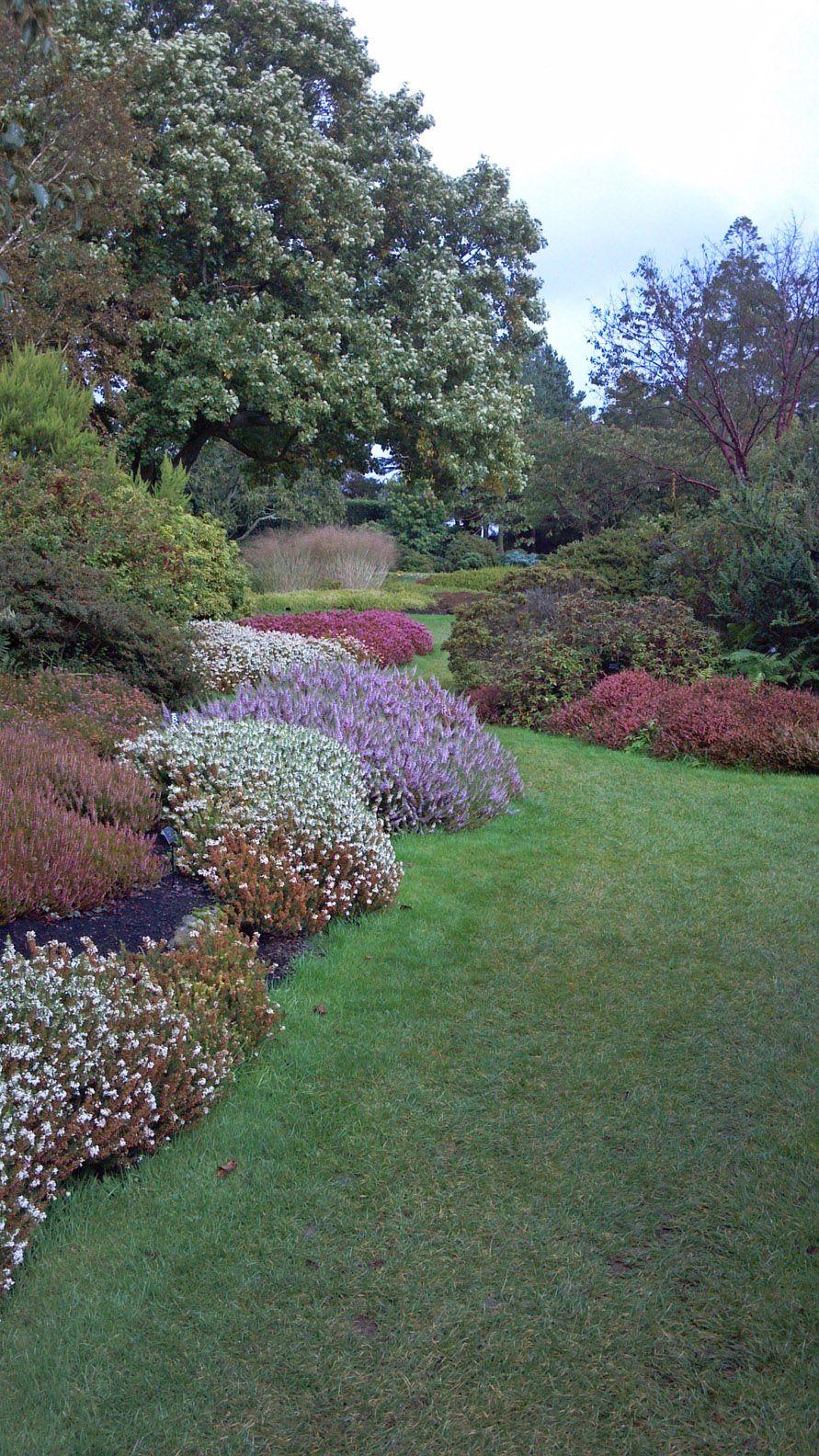 heather gardens garden borders