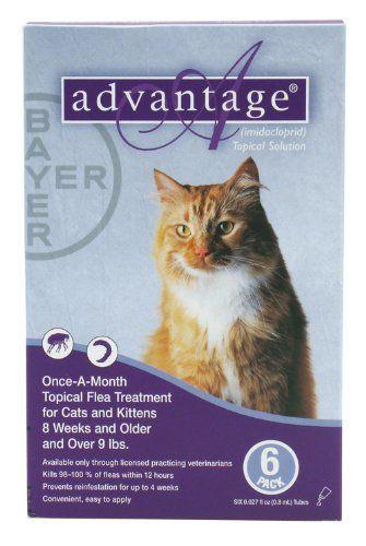Pin By Maki 4im On Pet Supplies Cat Fleas Flea Treatment Cats