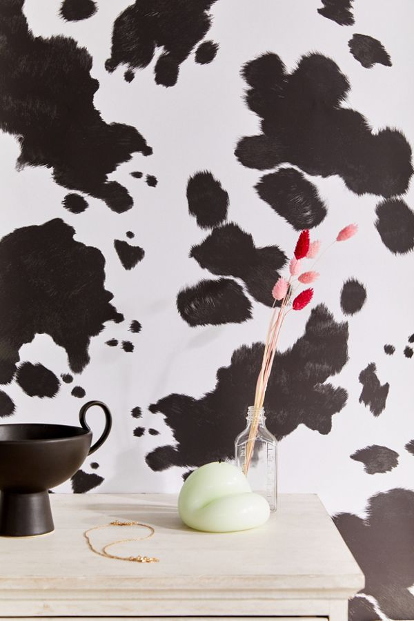 Urban Outfitters Cow Removable Wallpaper Cow wallpaper