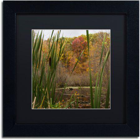 Trademark Fine Art Autumn Marsh Canvas Art by Kurt Shaffer, Black Matte, Black Frame, Size: 16 x 16, Multicolor