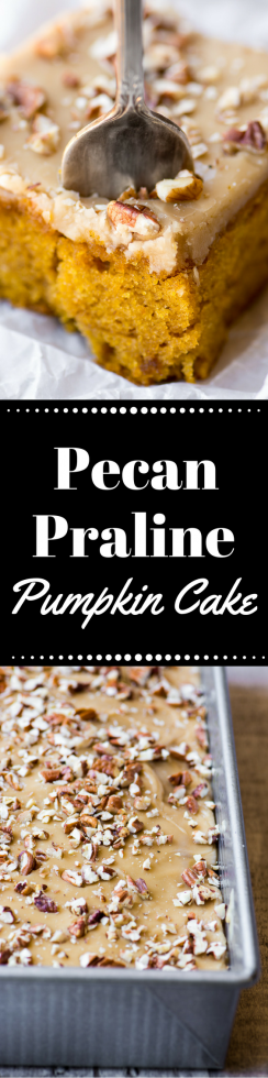 Pecan Praline Pumpkin Cake is the ultimate Fall dessert ~ theviewfromgreatisland.com